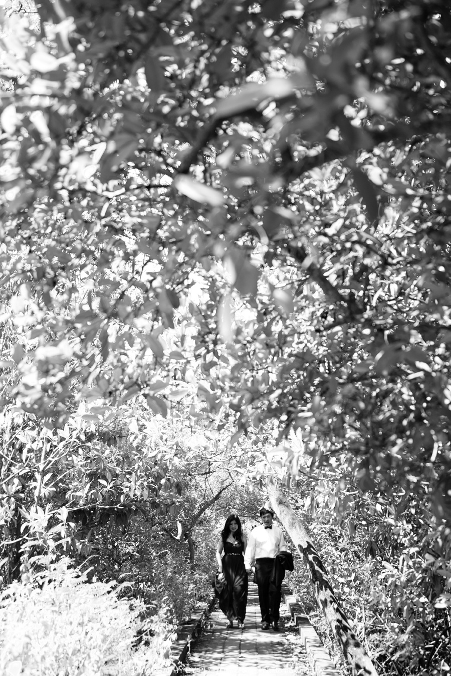 王鹏 PHOTOMAX 老麦摄影 巴厘岛婚纱摄影 (41)